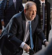 Harvey Weinstein. Lucas Jackson / TT NYHETSBYRÅN