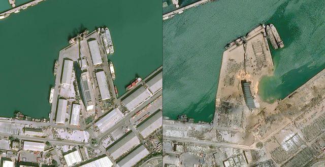 Satellitbilder tagna den 25 januari samt 5 augusti, dagen efter explosionen. TT NYHETSBYR�N
