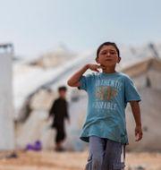 Pojke i al-Hol-lägret Baderkhan Ahmad / TT NYHETSBYRÅN