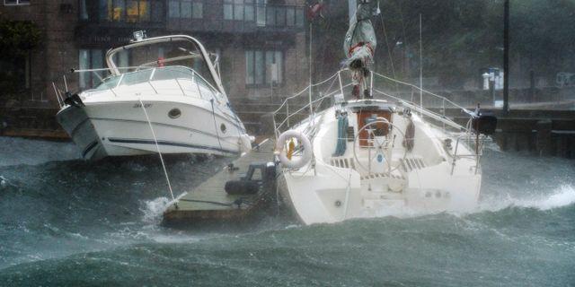 Vågor längs Kanadas kust efter orkanen Dorian Andrew Vaughan / TT NYHETSBYRÅN