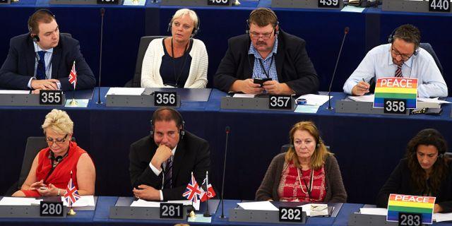 Kristina Winberg (SD) tillsammans med Peter Lundgren (SD), nummer 356 och 357, i EU-parlamentet i Strasbourg FREDRIK PERSSON / TT / TT NYHETSBYRÅN