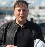 Teslas vd Elon Musk.  Christophe Gateau / TT NYHETSBYRÅN