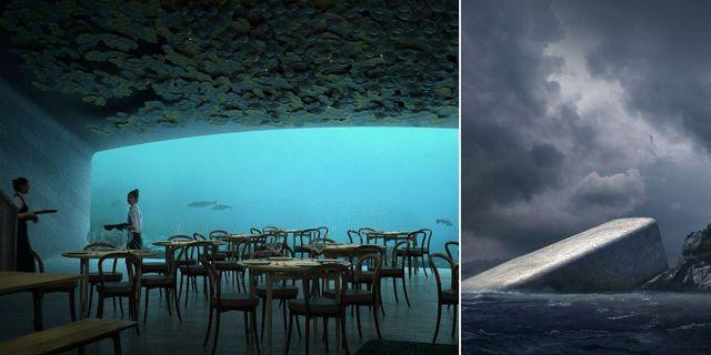 Nu kan du boka bord på Europas första undervattensrestaurang, som öppnar i vår. Snøhetta