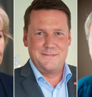 Helene Hellmark Knutsson/Tobias Baudin/Irene Wennemo. TT