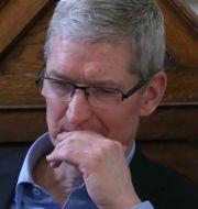 Tim Cook, Apples vd.  Shutterstock