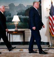 Pence och Trump. Jacquelyn Martin / TT NYHETSBYRÅN