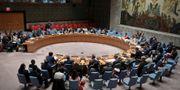 FN:s säkerhetsråd. Bebeto Matthews / TT NYHETSBYRÅN/ NTB Scanpix