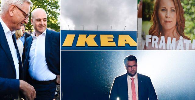 Carl Bildt, Fredrik Reinfeldt, Annie Lööf och Jimmie Åkesson.  TT