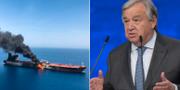 FN:s generalsekreterare António Guterres fördömer attacken i Omanbukten.  AFP/TT