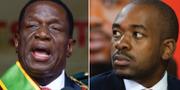 Emmerson Mnangagwa och Nelson Chamisa. TT