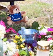 Två personer dog efter olyckan på Öland under onsdagen. Mikael Fritzon/TT / TT NYHETSBYRÅN