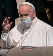 Påve Franciscus. Domenico Stinellis / TT NYHETSBYRÅN