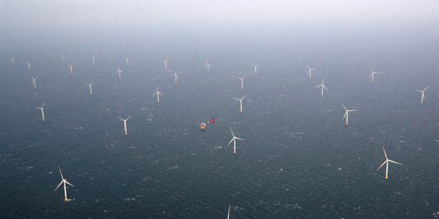 Statoils vindfarm i Great Yarmouth, Storbritannien. Darren Staples / TT NYHETSBYRÅN