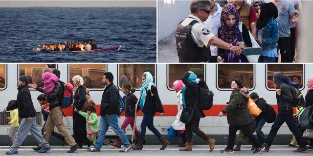 Dn rapporterar direkt om flyktingsituationen