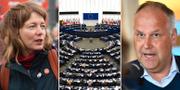 Malin Björk (V)/EU-parlamentet/Jonas Sjöstedt (V) TT