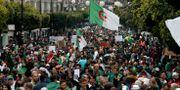 Demonstrationer i Algeriet mot makteliten i landet. Arkivbild. Toufik Doudou / TT NYHETSBYRÅN