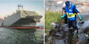 Fraktfartyget Makassar Highway/Frivilliga Resursgruppen i Västervik rensar olja från klipporna runt Flatvarps hamn TT