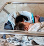 Spädbarn/Illustrationsbild Christine Olsson/TT / TT NYHETSBYRÅN