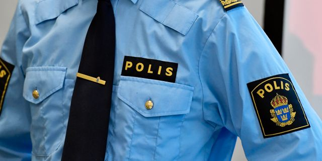 Arkivbild Janerik Henriksson/TT / TT NYHETSBYRÅN