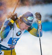 Sebastian Samuelsson. JASMIN WALTER / BILDBYRÅN