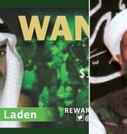 Hamza bin Ladin/Osama bin Ladin. TT