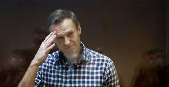 Aleksej Navalnyj. Arkivbild.  Alexander Zemlianichenko / TT NYHETSBYRÅN