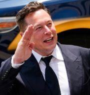Elon Musk.  Matt Rourke / TT NYHETSBYRÅN