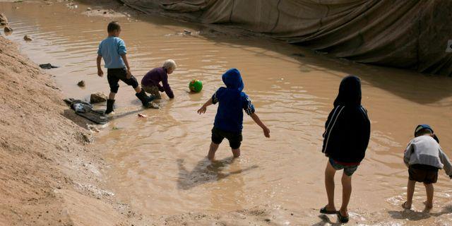 Arkivbild. al-Hol-lägret. Barnen på bilden har inte med texten att göra.  Maya Alleruzzo / TT NYHETSBYRÅN