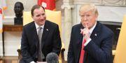 Statsminister Stefan Löfven (S) med USA:s president Donald Trump under deras möte i Vita huset i Washington. Henrik Montgomery/TT / TT NYHETSBYRÅN