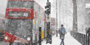 En buss i London.  TOLGA AKMEN / AFP