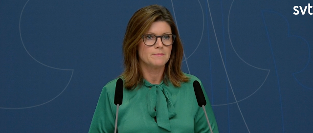 Eva Nordmark (S) Skärmdump SVT