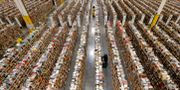 Amazon-anställda på en anläggning i Phoenix Ross D. Franklin / TT NYHETSBYRÅN/ NTB Scanpix
