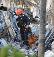 En person ur räddningstjänsten som söker överlevare efter husraset.  David Santiago / TT NYHETSBYRÅN