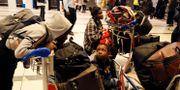 Nigerianska familjer köar för att få checka in till flyget från Sydafrika. Denis Farrell / TT NYHETSBYRÅN