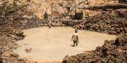 En man vid en guldgruva i Guyana. Flera kvinnor tvingades sälja sex i området. Nicola Vigilanti / TT NYHETSBYRÅN