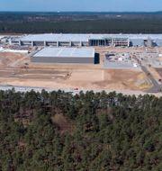 Vy över Teslas tyska fabriksbygge, 27 april 2021.  Michael Sohn / TT NYHETSBYRÅN