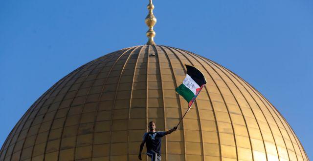 En man med den palestinska flaggan framför moskén i Jerusalem.  Mahmoud Illean / TT NYHETSBYRÅN