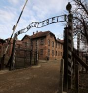 Auschwitz. Markus Schreiber / TT NYHETSBYRÅN