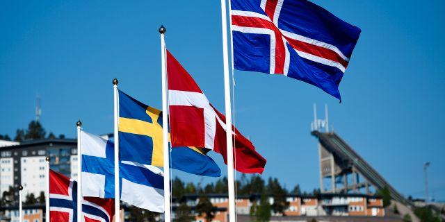 Nordiska flaggor (Arkivbild) Erik Mårtensson / TT / TT NYHETSBYRÅN