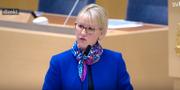 Margot Wallström  SVT