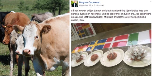 For mycket antibiotika till usa barn