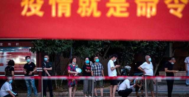 Provtagning i Wuhan, 3 augusti. TT NYHETSBYRÅN