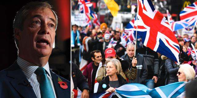 Nigel Farage. TT
