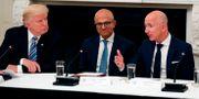 President Donald Trump, Microsofts vd Satya Nadella och Amazons vd Jeff Bezos. Alex Brandon / TT NYHETSBYRÅN
