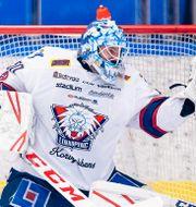 Jonas Gustavsson har tagit en paus från hockeyn. JONAS LJUNGDAHL / BILDBYRÅN