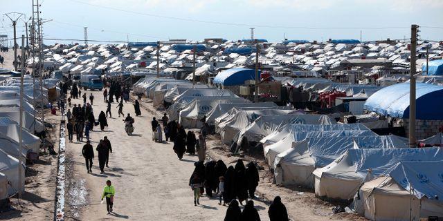 Flyktinglägret al-Hol i Syrien.  ALI HASHISHO / TT NYHETSBYRÅN