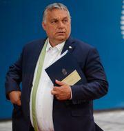 Viktor Orbán.  Olivier Matthys / TT NYHETSBYRÅN