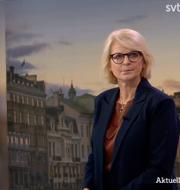 Oscar Sjöstedt och Elisabeth Svantesson i Aktuelltstudion. SVT
