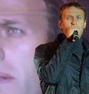 VASILY MAXIMOV