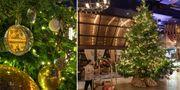 Enbart en av dekorationerna i julgranen – en röd diamant värd 50 miljoner – hade kunnat köpa rent vatten till 385 000 bybor i Tanzania för resten av livet, enligt NY Post. Kempinski Hotels